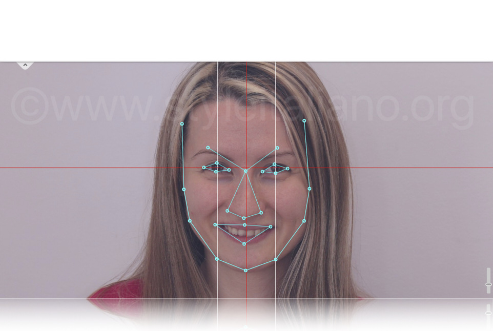 Facial map with landmark points and type
